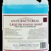 Anti-Bacterial Liquid Hand Soap